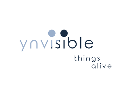 Ynvisible Interactive
